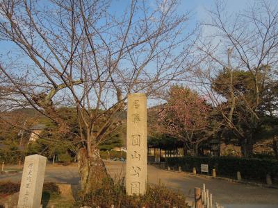 丸山公園-2