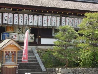 松尾大社-5