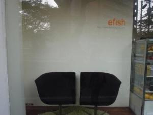 efish-6.jpg