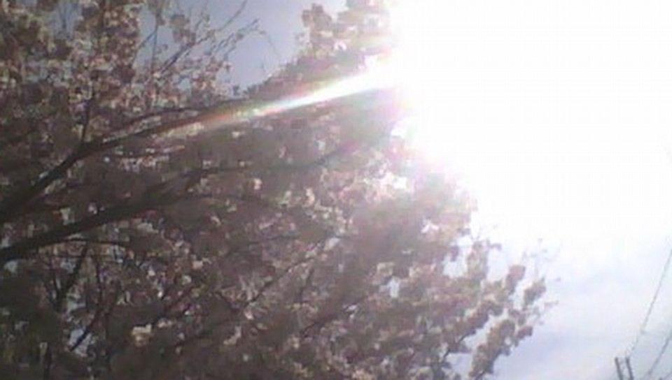 2014-04-03-092907_1.jpg