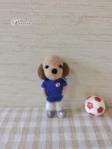 6月サッカーコロン1