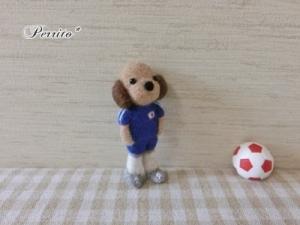 6月サッカーコロン2