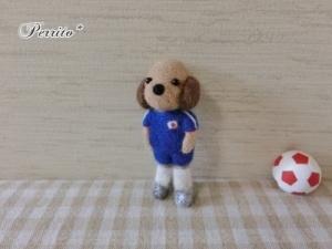 6月サッカーコロン3