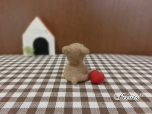 6月柴犬5