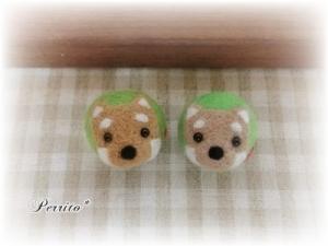 7月柴犬ボール3
