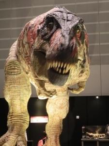 2014年8月恐竜展1