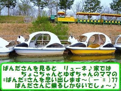 8_20140422203153a25.jpg