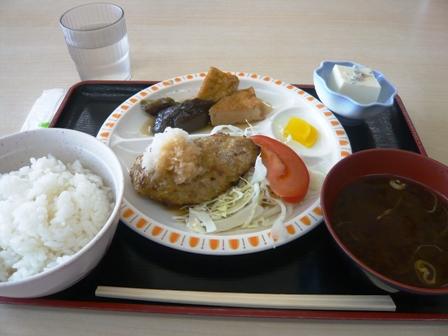 ナカモリ臨港病院店:おろしハンバーグ定食1