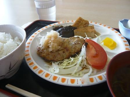 ナカモリ臨港病院店:おろしハンバーグ定食2
