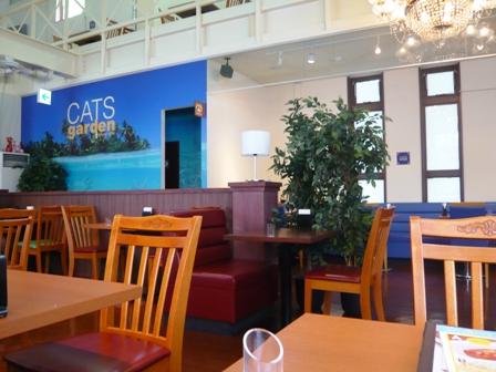 CATS garden:店内1