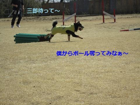 IMG_1383.jpg