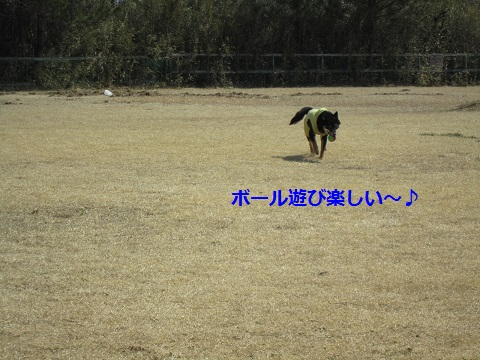 IMG_1403.jpg