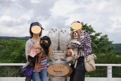 blog-DSC06878.jpg