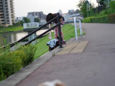 blog-P1270529.jpg