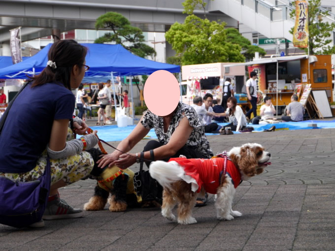 blog-P1280948.jpg