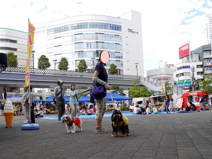 blog-P1280959.jpg