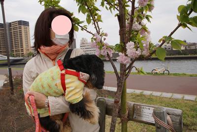blogDSC04144.jpg