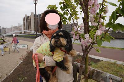 blogDSC04147.jpg