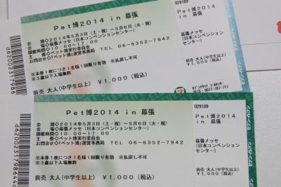 blogDSC07439.jpg