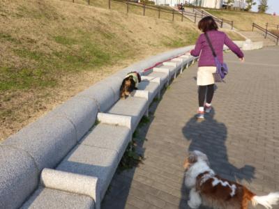 blogP1010976.jpg