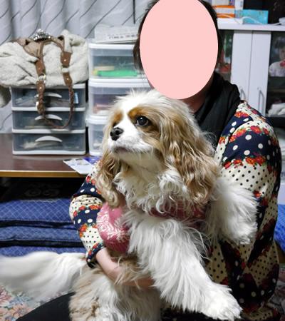 blogP1170981.jpg