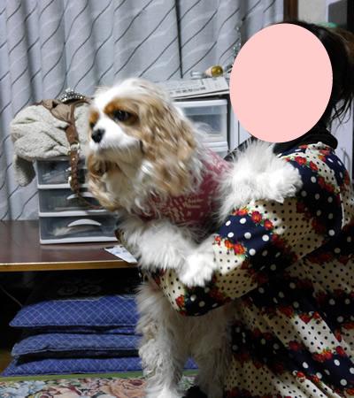 blogP1170987.jpg