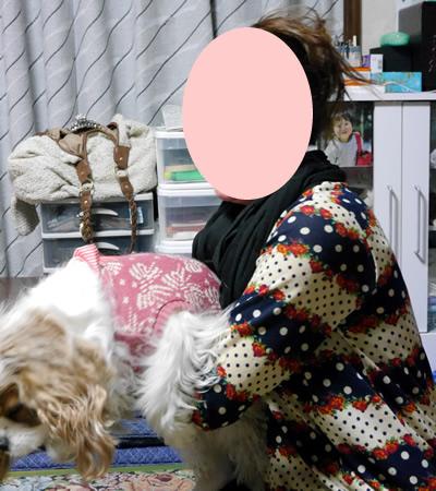 blogP1170988.jpg