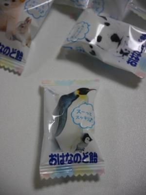 blogP1200630.jpg