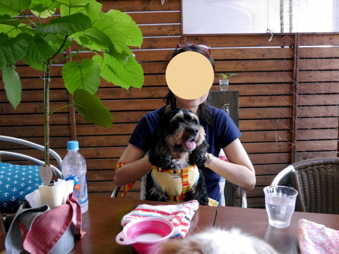blog_P1290135.jpg