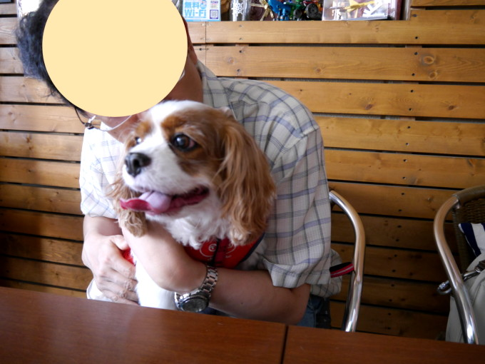 blog_P1290179.jpg