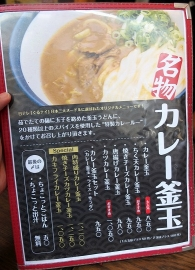 讃州ひやかけ2014