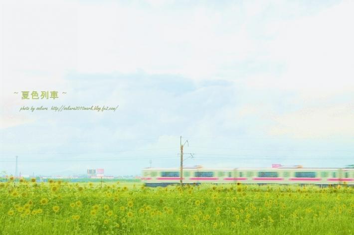 IMG_1876.jpg