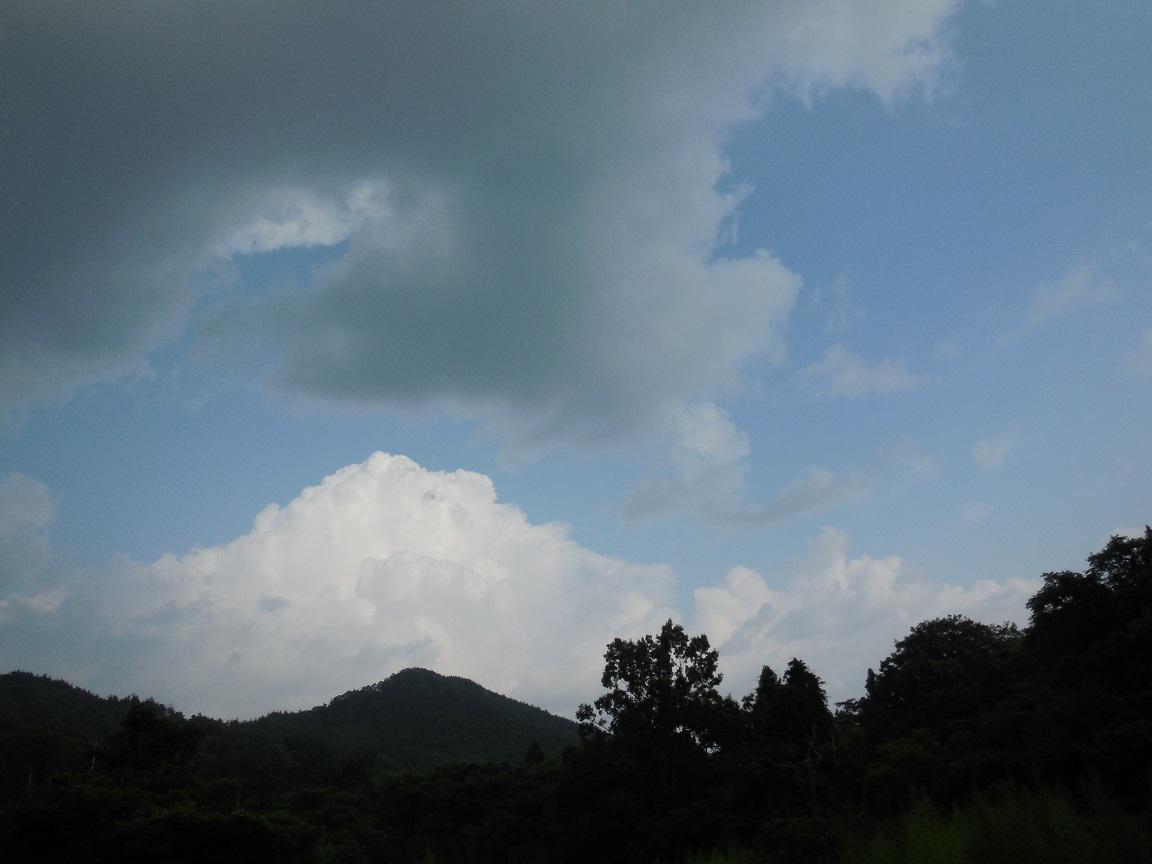 山真似る雲