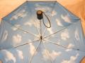 H260605umbrella3.jpg