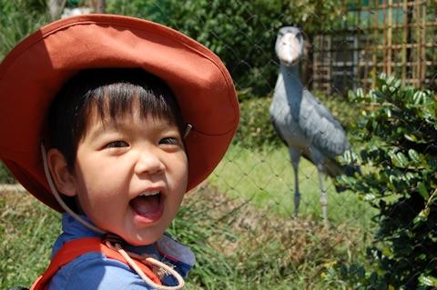 陸空動物園誕生日 017