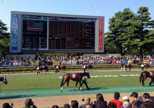 東京競馬4
