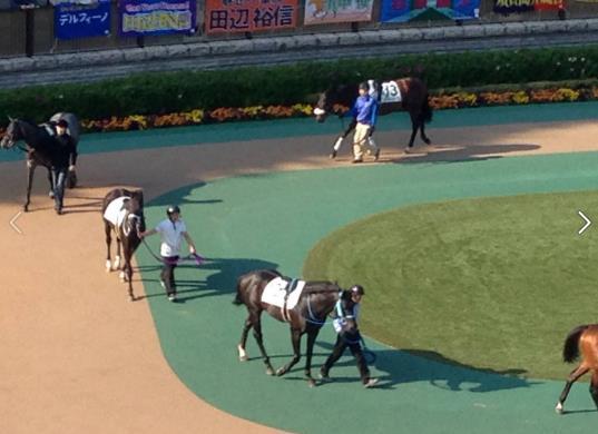 東京競馬6