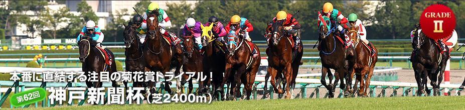 神戸新聞杯2014 デッフォルト