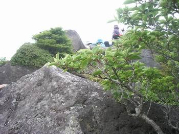偽鳴子山15