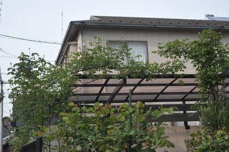 carierre2014424-2.jpg