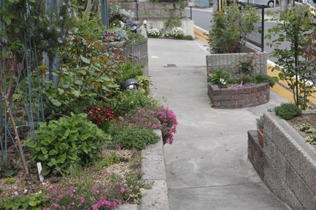 garden2014416-1.jpg