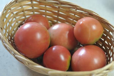 tomato2014807-2.jpg