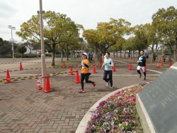 神戸リレーマラソン-6