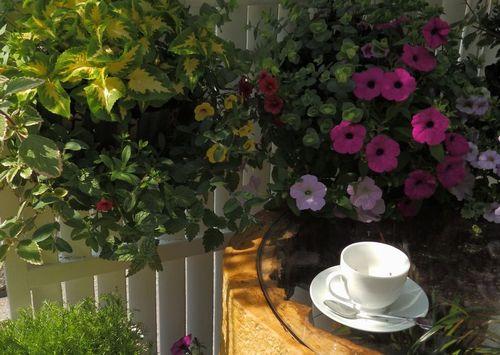 花とカップ