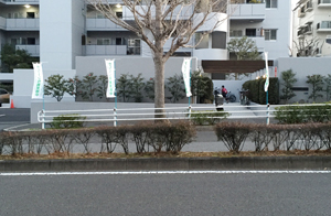 nobori2.jpg