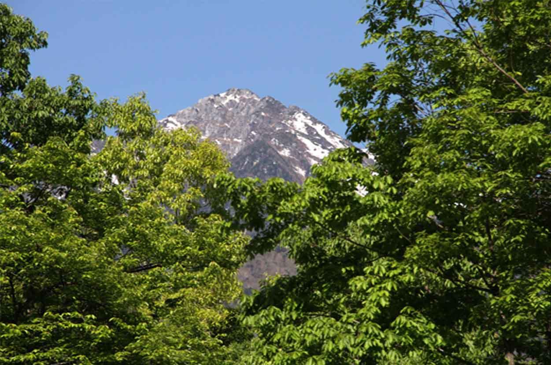 甲斐駒ケ岳山麓で(4)