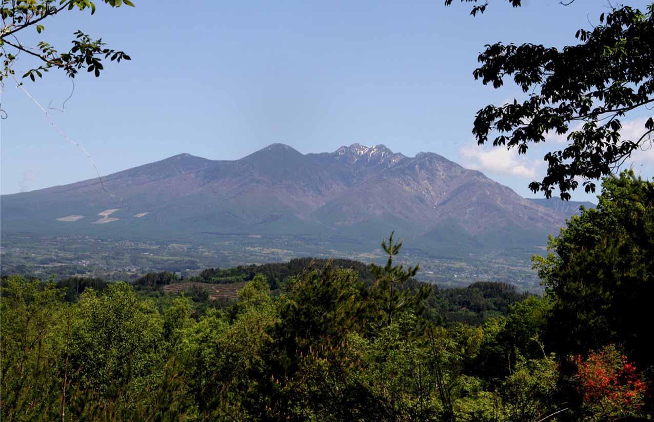 甲斐駒ケ岳山麓で(17)