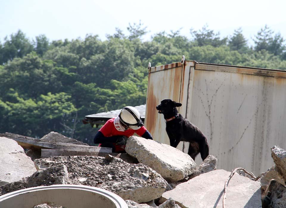瓦礫訓練施設の中で(16)