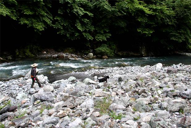 河原で捜索 0719(1)