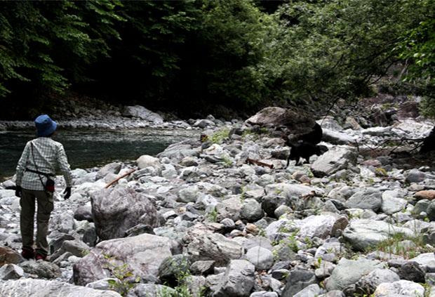 河原で捜索 0719(3)